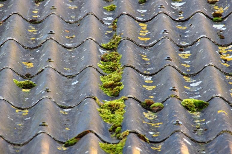 vervuild dak